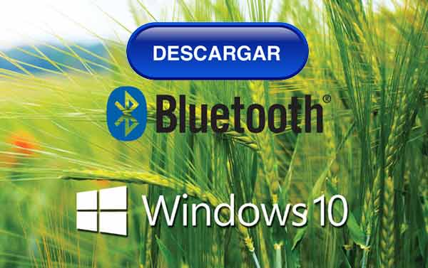 descargar controlador bluetooth windows 10